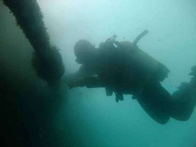 diving.jpg - large